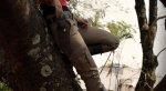 Косплей Хлои из Uncharted 2 изображает мечту Троя Бейкера  - Изображение 2