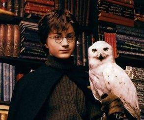 В Dying Light: The Following найдена «пасхалка» про Гарри Поттера