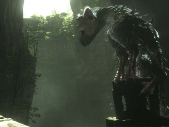 Сравнение The Last Guardian на PS4 и PS4 Pro