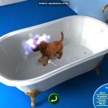 Скриншот Doggies – Изображение 5