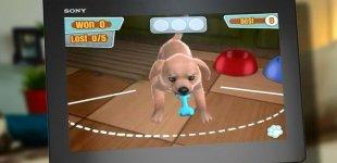 PlayStation Vita Pets. Видео #2