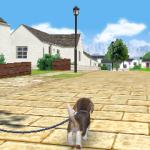 Скриншот Nintendogs + Cats – Изображение 15