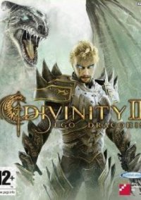 Обложка Divinity II: Developer's Cut