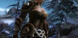 Guild Wars 2. Видео #5