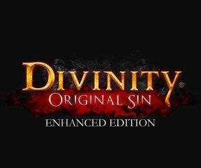 Как устроен кооператив в Divinity: Original Sin Enhanced Edition