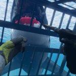 Скриншот World of Diving – Изображение 3