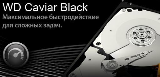 Викторина Caviar Black от Western Digital. Старт - Изображение 2