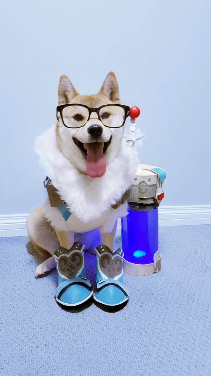 Сногсшибательный собакосплей Overwatch . - Изображение 8