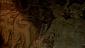 Топ 5 экранизаций произведений Г.Ф. Лавкрафта. Часть 1. [spoiler alert] - Изображение 9