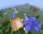 """Приветствую вас дорогие друзья !  Открылся новый сервер """" Minecraft """" .Сразу предупреждаю !   Сервер работает в день ... - Изображение 4"""