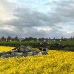 Скриншот Wargame: European Escalation – Изображение 46