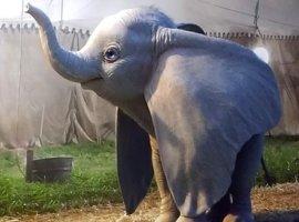 Первый трейлер «Дамбо»: расставание смамой игрустный слоник-клоун вслезодавилке Тима Бертона