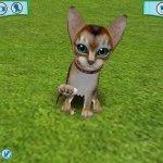 Скриншот Catz 6 – Изображение 6