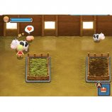 Скриншот Harvest Moon: The Tale of Two Towns – Изображение 3
