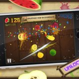 Скриншот Fruit Ninja – Изображение 2