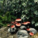 Скриншот The Elder Scrolls V: Skyrim Special Edition – Изображение 3
