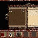 Скриншот RuneSword 2 – Изображение 3