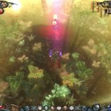 Скриншот Dawn of Magic – Изображение 9