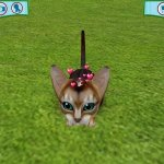 Скриншот Catz 6 – Изображение 5