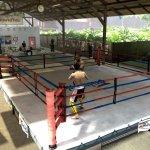 Скриншот EA Sports MMA – Изображение 98