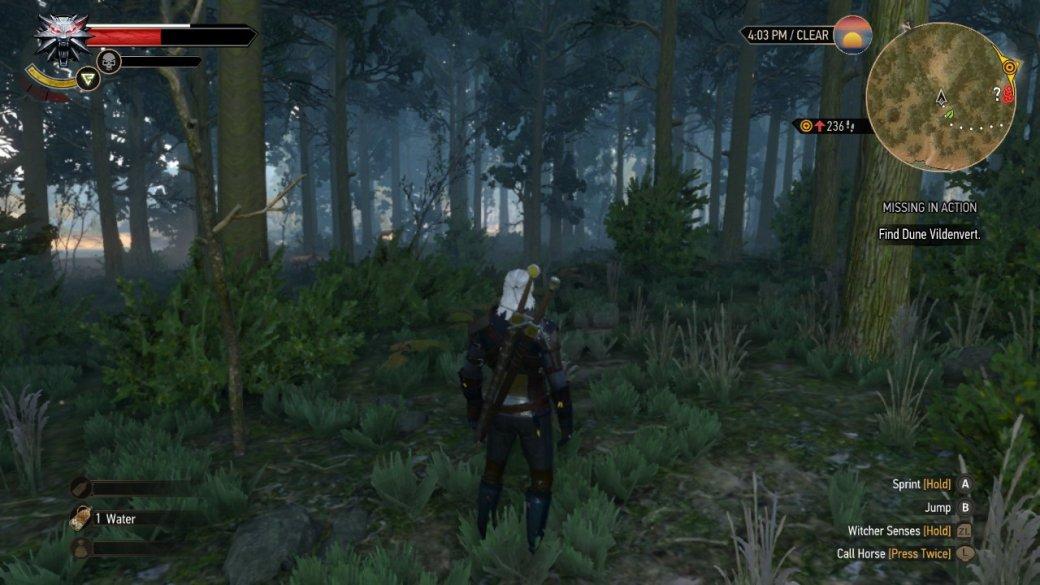 Обзор «Ведьмак 3: Дикая Охота» для Nintendo Switch — стабильные 30 FPS и29 гигабайт «веса» | Канобу - Изображение 140