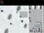 Обзор треш-игр от Falco Software (#16) Танчики ч.1. - Изображение 48