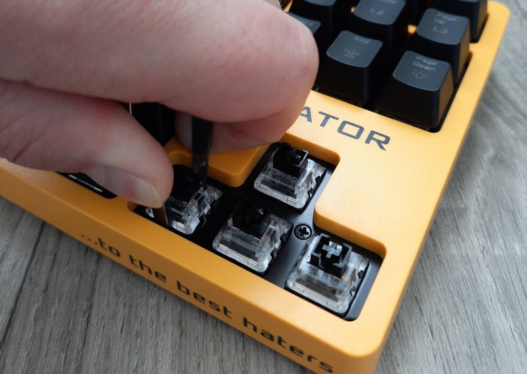 Обзор клавиатуры Hator Rockfall EVO TKL. Бюджетная оптическая клавиатура | Канобу - Изображение 1446