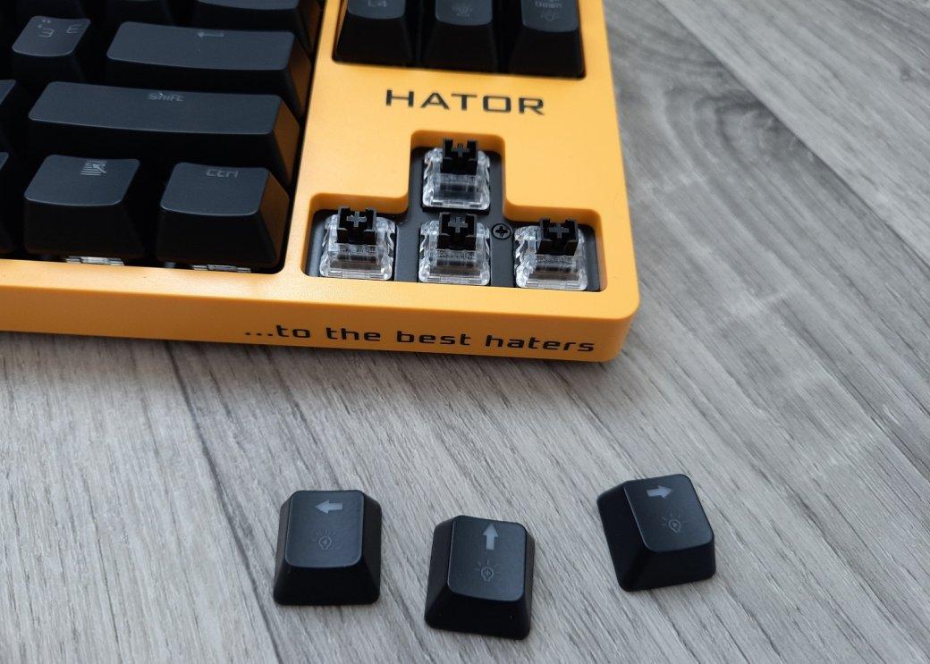 Обзор клавиатуры Hator Rockfall EVO TKL. Бюджетная оптическая клавиатура | Канобу - Изображение 1445