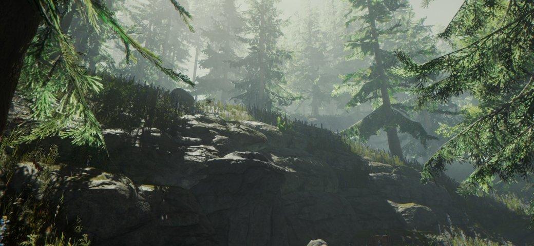 The Forest — записки из мертвого леса. - Изображение 7