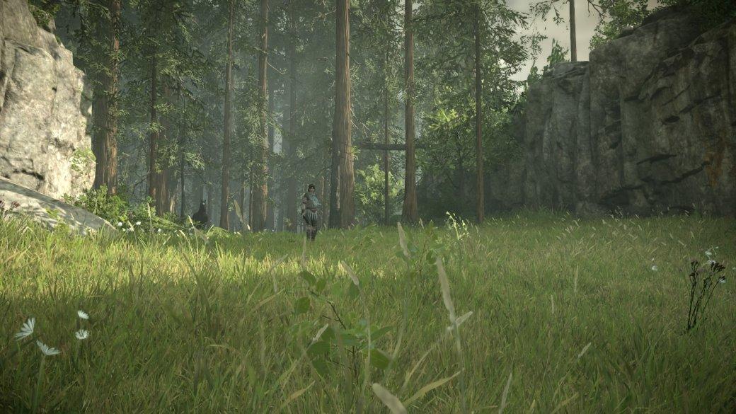 20 изумительных скриншотов Shadow of the Colossus для PS4. - Изображение 15